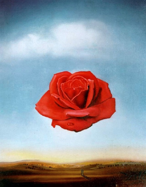 dali-the-meditative-rose-1